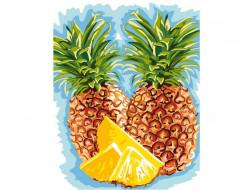 Canevas 50 x 65 cm - Ananas