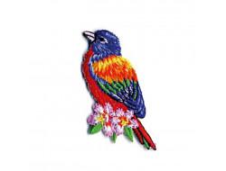 Écusson thermocollant oiseaux tropicaux - Loriquet arc-en-ciel