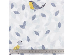 Tissu Dashwood, Bird Watching