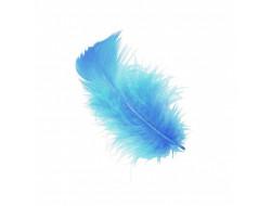 Boites de plumes - Bleu turquoise