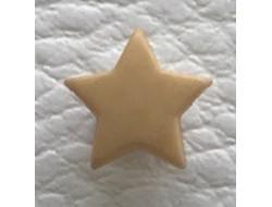 Bouton étoile beige