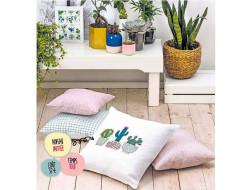 Cactus moelleux - Mode et Travaux