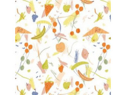 Tissu popeline Healthy fly Katia Fabrics