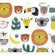 Tissu popeline jungle heroes - Katia Fabrics
