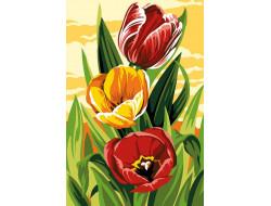 Canevas Tulipes, Seg