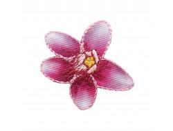 Ecusson thermocollant fleur des montagnes rose