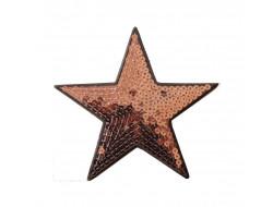 Grand écusson thermocollant étoile paillettes doré brun